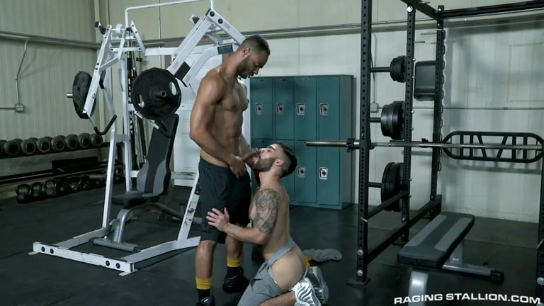 interracial gym fuck with Rooney Marx fucking Papi Suave
