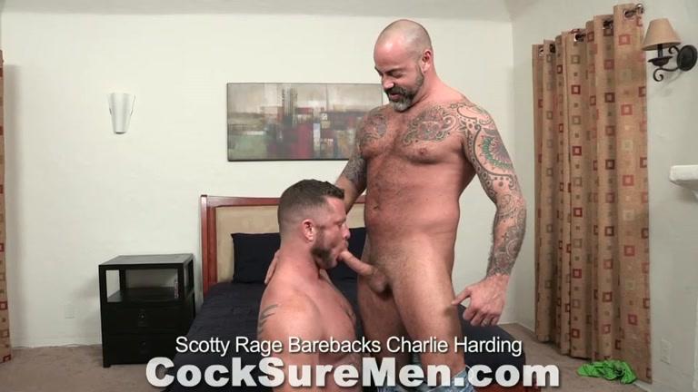 Sex gay vedio