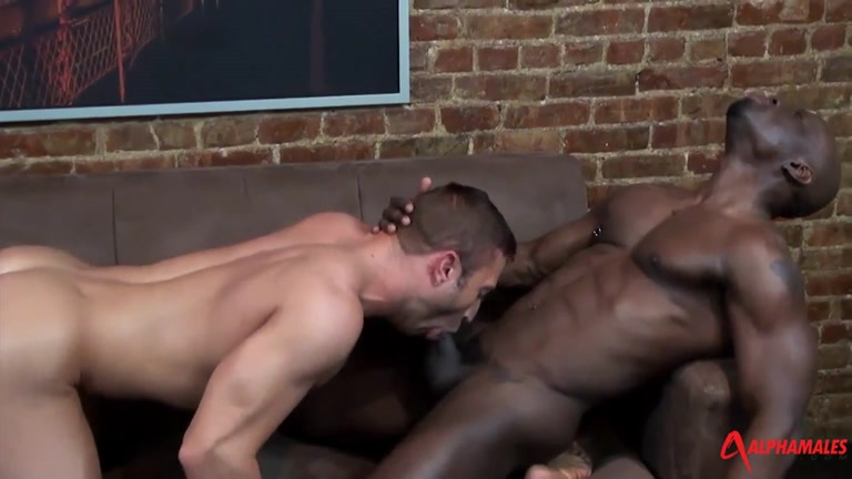 Jay Black And Jr Bronson At Alpha Males - Gaydemon-7264