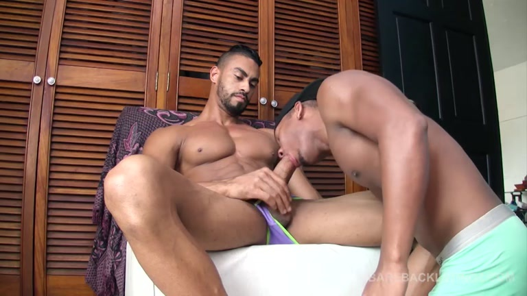 Latino Gay Studs Indulging Bareback