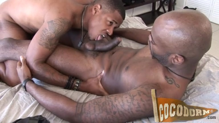Black gay cock movies