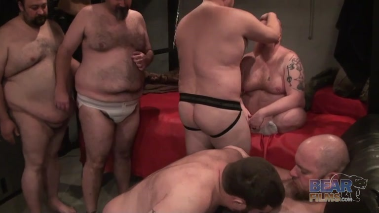 Free gay bear orgys — pic 6