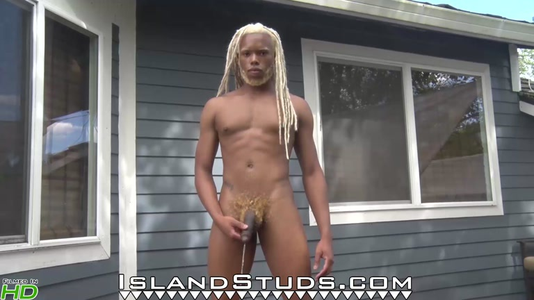 Timarrie at Island Studs