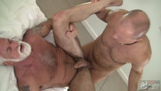 hung silver daddies take turns fucking each other