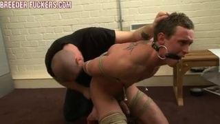 Master takes on new straight sub Scotty