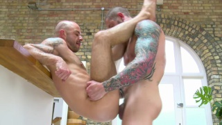 Hot cub takes Harley Everett's big cock
