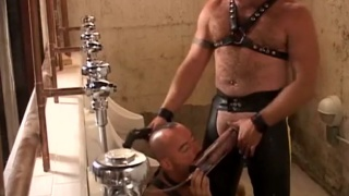 piss pig on his knees at urinal