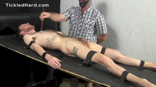 furry bound guy gets tickled