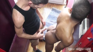 Fred Mayer fucking harlem hookups ass