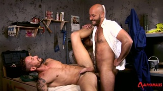 Bruno Fox and Nick North at alpha males