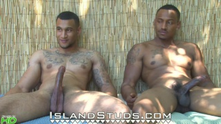 king brothers at island studs