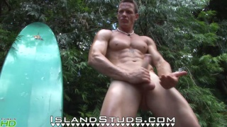Miller at Island Studs