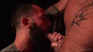 Benjamin Banks, Ray Dalton & Stephen Harte at TIM Suck