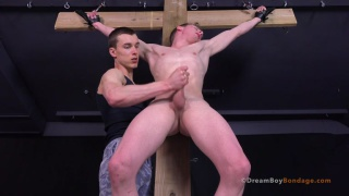 noah part 10 at dreamboy bondage