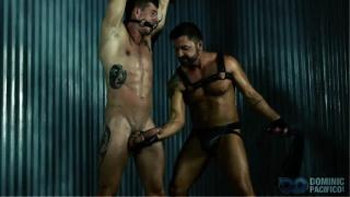 Gay bdsm porn videos