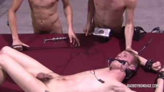 Wake In Chains Part 2 at Bad Boy Bondage
