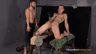 Free men in gay bdsm