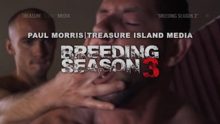 Breeding Season 3 at Dark Alley